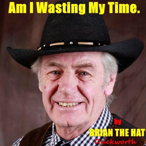 Am I Wasting My Time von Brian the Hat Duckworth