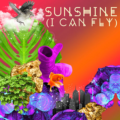 Sunshine (I Can Fly) by Williamsburg Salsa Orchestra