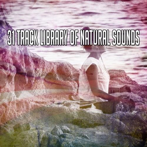 31 Track Library Of Natural Sounds de Meditación Música Ambiente