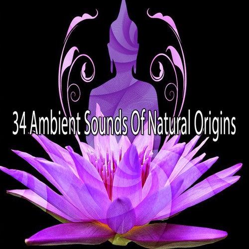 34 Ambient Sounds Of Natural Origins de Meditación Música Ambiente