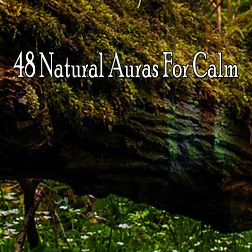 48 Natural Auras For Calm von Best Relaxing SPA Music