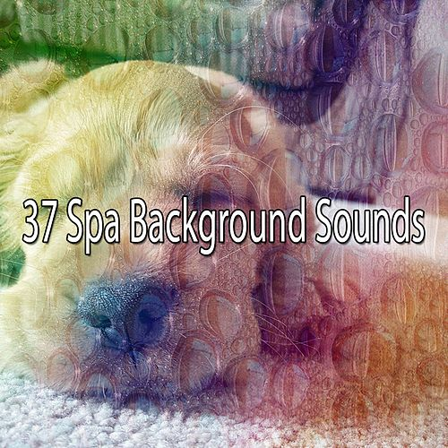 37 Spa Background Sounds von Best Relaxing SPA Music