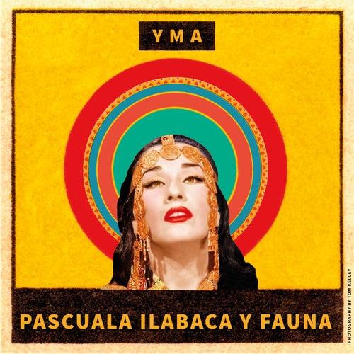 Yma by Pascuala Ilabaca y Fauna