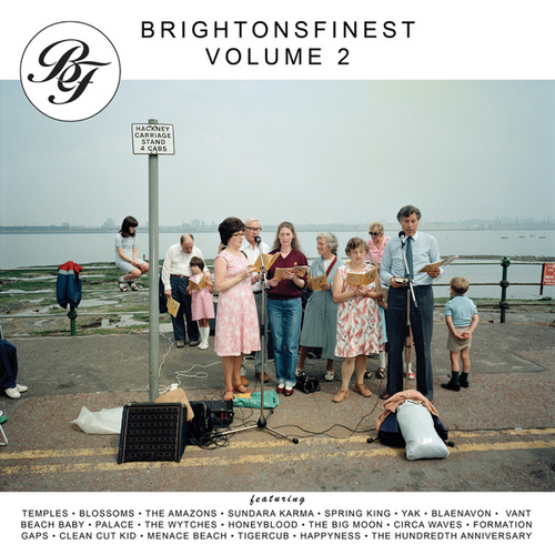 Brightonsfinest, Vol. 2 von Various Artists