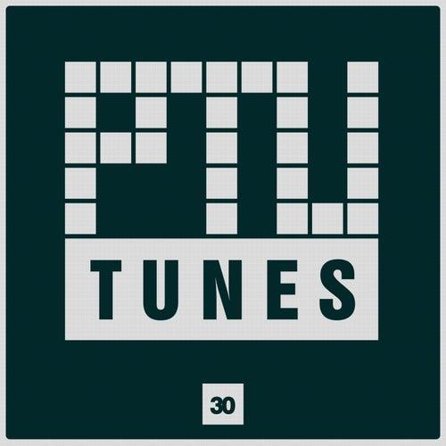 Ptu Tunes, Vol. 30 by Various Artists