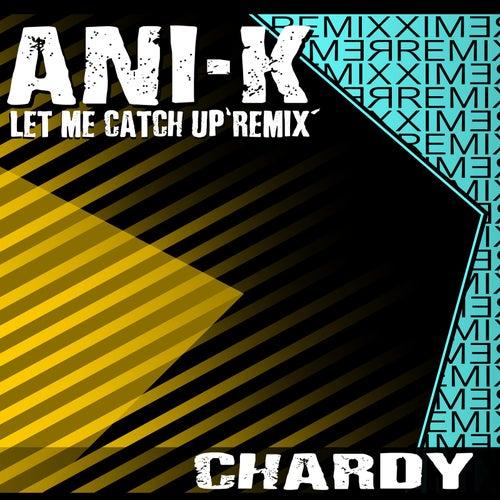 Let Me Catch up (Remix) by Ani-K
