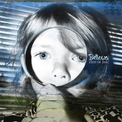 Hide or Seek by Bellows