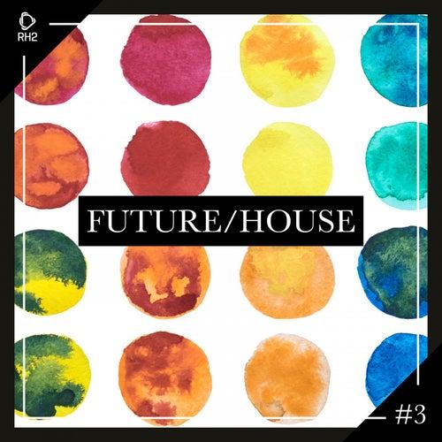 Future/House #3 von Various Artists