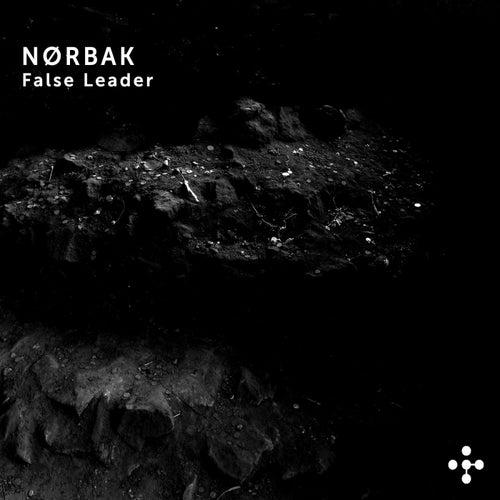 False Leader - Single by Nørbak