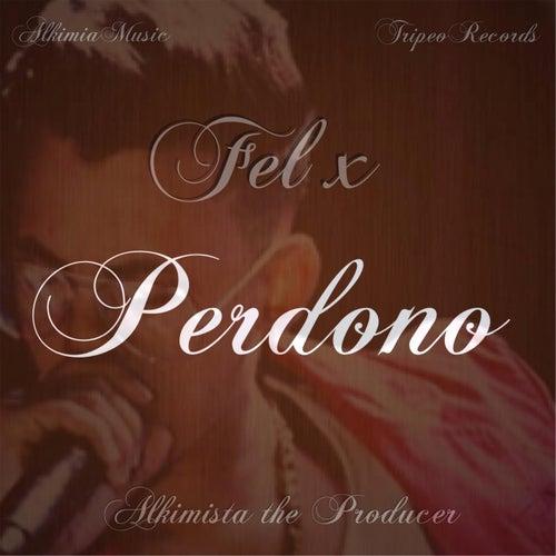 Perdono by Fel X