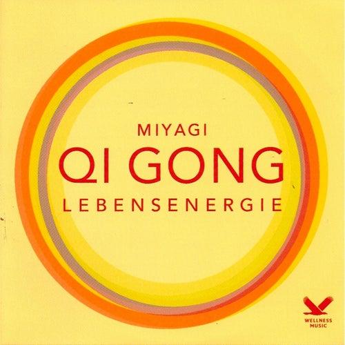 Qi Gong by Miyagi