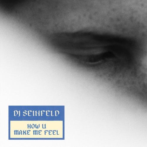 How U Make Me Feel by DJ Seinfeld