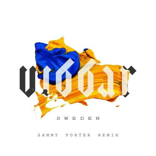 Sweden (Sammy Porter Remix) by Vibbar
