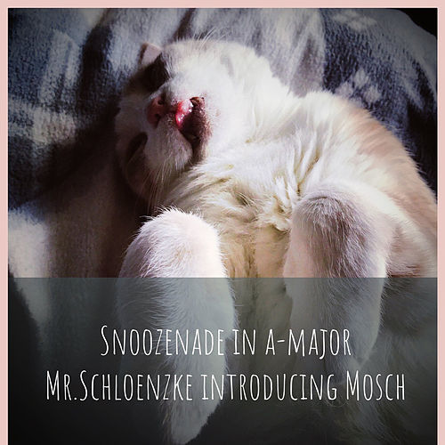 Snoozenade in a-major / Mr.Schloenzke introducing Mosch von Cate Evens