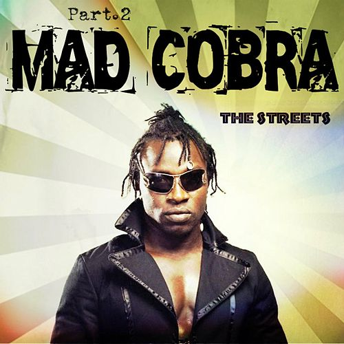 The Streets Part 2 by Mad Cobra