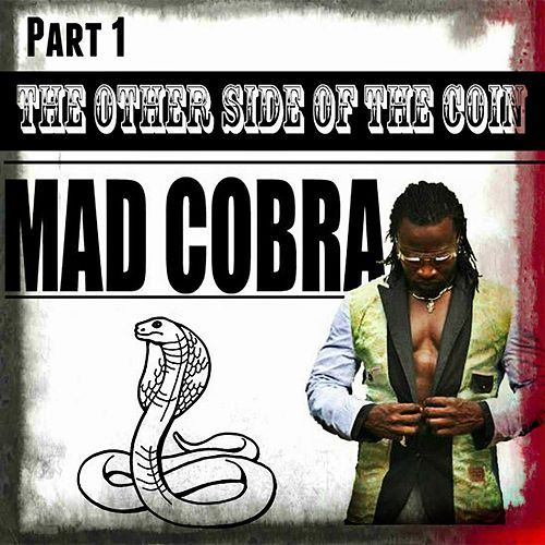 The Other Side Of The Coin Part 1 by Mad Cobra