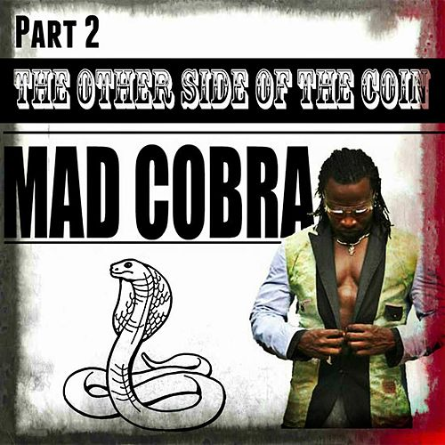 The Other Side Of The Coin Part 2 by Mad Cobra