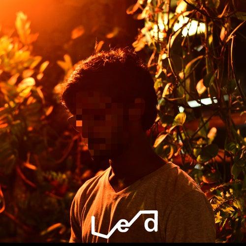 Static de L.E.D.