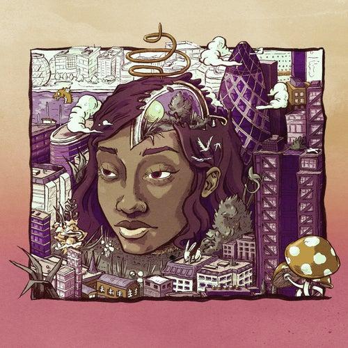 Stillness In Wonderland (Deluxe Edition) de Little Simz