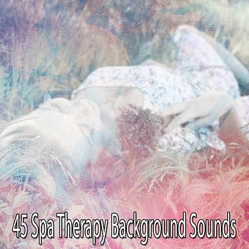 45 Spa Therapy Background Sounds von Best Relaxing SPA Music