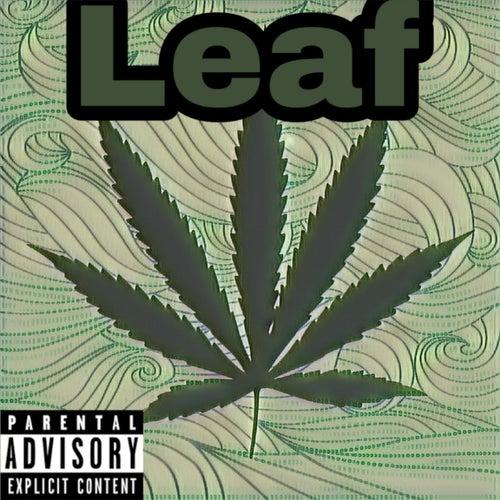 Leaf by MaddTekHeart