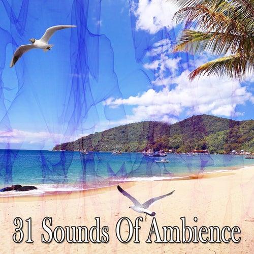 31 Sounds Of Ambience de Meditación Música Ambiente