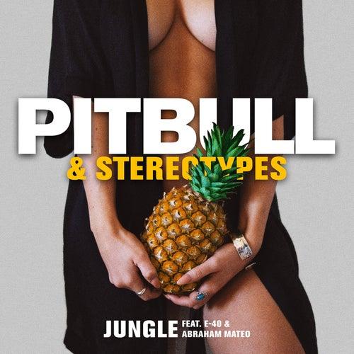 Jungle de Pitbull & Stereotypes
