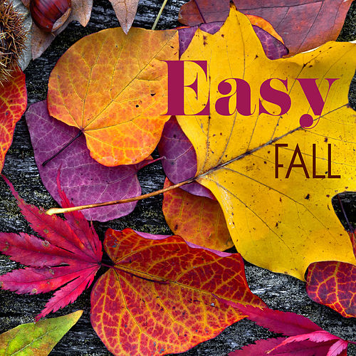 Easy Fall (Relaxing Autumnal Music Playlist) von Various Artists