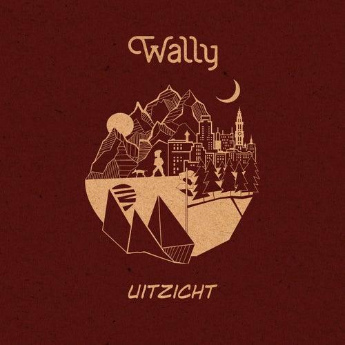 Uitzicht de Wally
