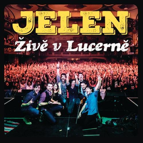 Zive v Lucerne (Live) de Various Artists