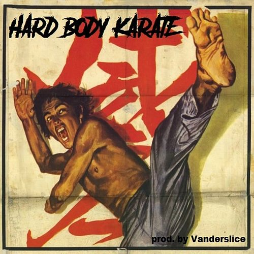 Hard Body Karate by Vanderslice