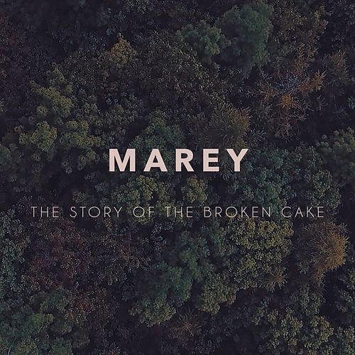 The Story of the Broken Cake von Marey