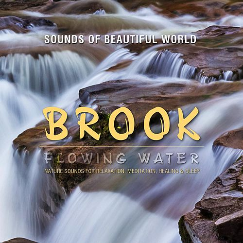 Flowing Water: Brook (Nature Sounds for Relaxation, Meditation, Healing & Sleep) by Sounds of Beautiful World