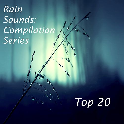 2017 Compilation: Top 20 Loopable Rain Sounds for Deep Sleep, Insomnia, Meditation and Relaxation von Tinnitus