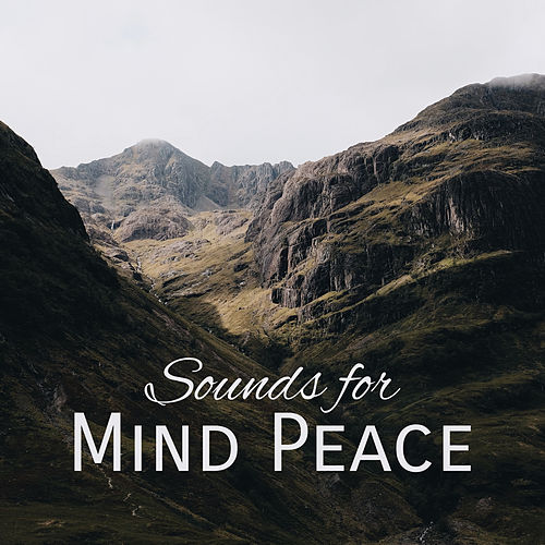 Sounds for Mind Peace – New Age Relaxation, Stress Relieve, Easy Listening, Peaceful Music de Relaxing Piano Music
