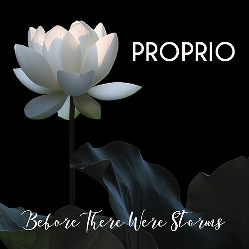 Before There Were Storms by Proprio