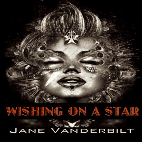 Wishing on a Star de Jane Vanderbilt