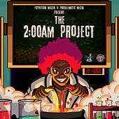 The 2:00AM Project by Various Artists
