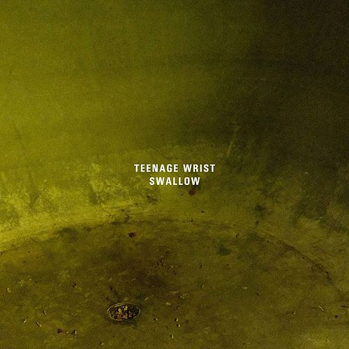 Swallow by Teenage Wrist