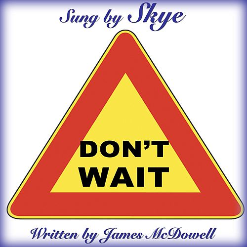 Don't Wait by Skye