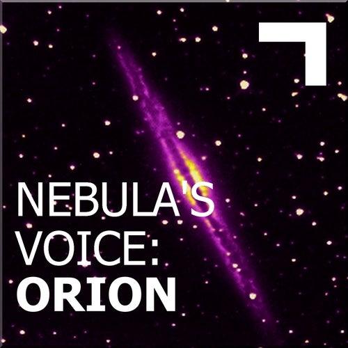 Nebula's Voice: Orion von Various Artists