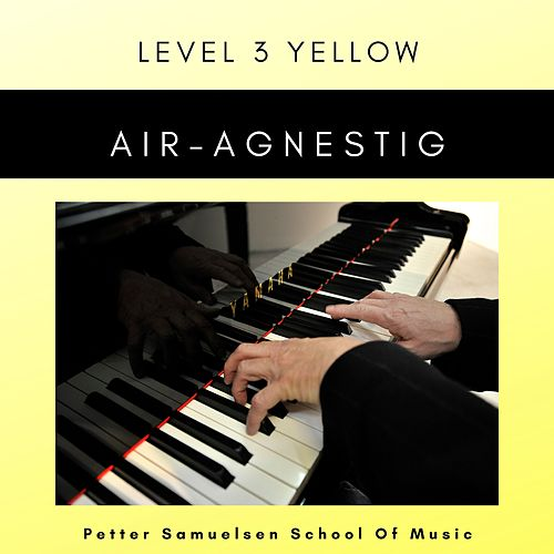 Air de Petter Samuelsen School Of Music