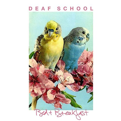 Bed & Breakfast de Deaf School