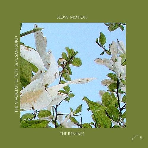 Slow Motion (Boston Bun & Punctual Remixes) by TCTS