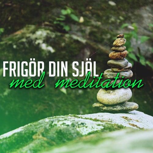 Frigör din själ med meditation de Various Artists