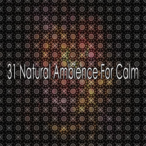 31 Natural Ambience For Calm de Meditación Música Ambiente