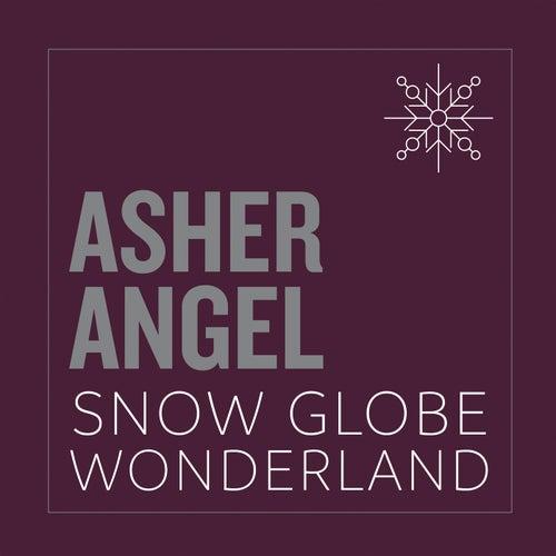 Snow Globe Wonderland by Asher Angel