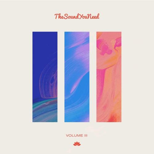 TheSoundYouNeed, Vol. 3 de Various Artists