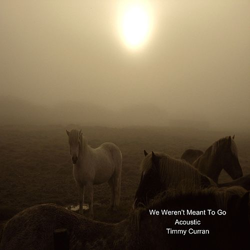 We Weren't Meant to Go (Acoustic) de Timmy Curran