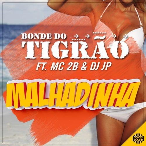 Malhadinha by Bonde do Tigrão